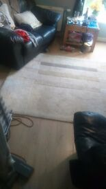 Large rug (neutral colours)
