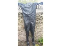 Dry suit oceanic