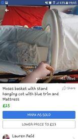 Blue moses basket