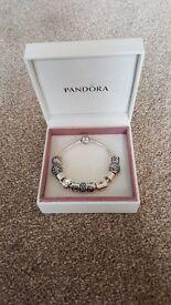 Pandora Bracelet - with 9 Pandora Charms and 2 Pandora Silver Separator Clips