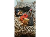 Two ukuleles brand new