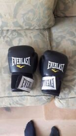 Everlast adult boxing gloves in great condition