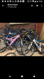 Selection of bikes for sale