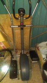 Carl lewis cross fit trainer