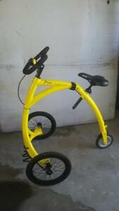 Alinker R-Volution Walking Bike - Item#18