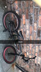 Source BMX bike
