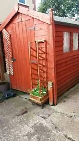 Garden shed 6/ 4