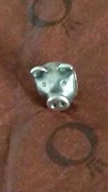 Rreal pig pandora charm
