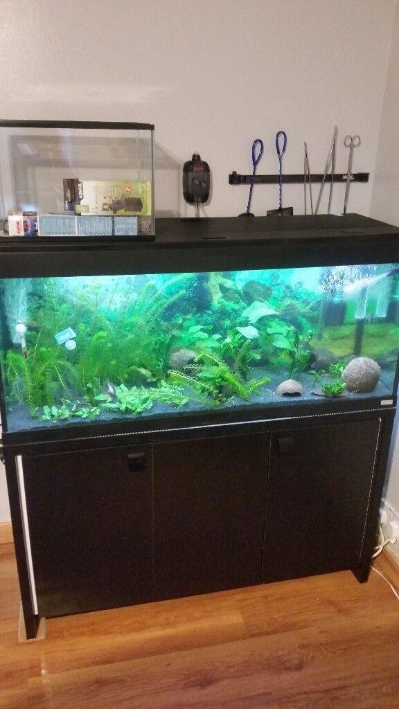 FLUVAL AQUARIUM 240L Eheim filter air pump heater and small aquarium