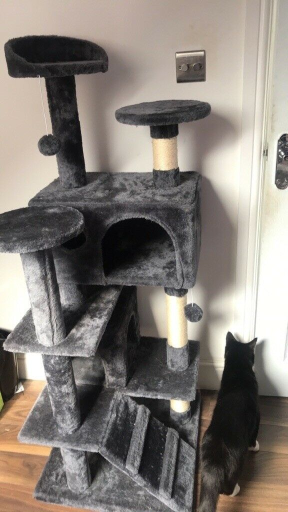 Fabulous Brand New Cat Tree House In Chadwell Heath London Download Free Architecture Designs Scobabritishbridgeorg