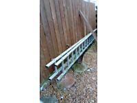 Youngman Trade 350 ladder