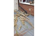 Free wood and old decking