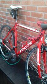 Focus cyclo cross bike