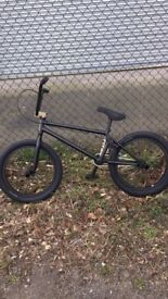 BMX Fit Brandon Begin