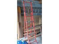 3 way multi ladder (red)