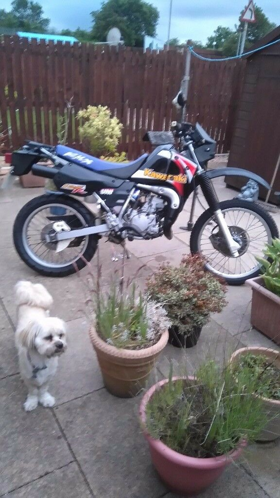 Kawasaki kmx125r mint condition. First to see will