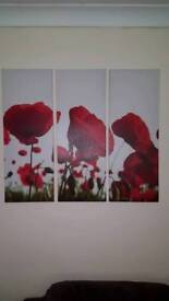 Poppy canvas picure frame