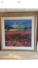 John Morse print of painting/picture red poppy