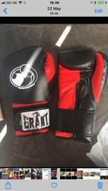 Grant and winning boxing gloves sparring set