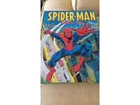 Spiderman 1977 annual. Good condition.