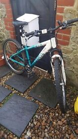 Bike for sale adults size