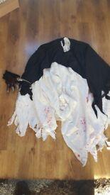 Fancy dress / halloween costume
