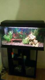 Tropical tank and stand