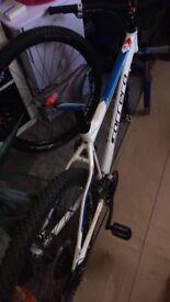 Carreras kraken bike