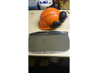 forestry and machinery helmet