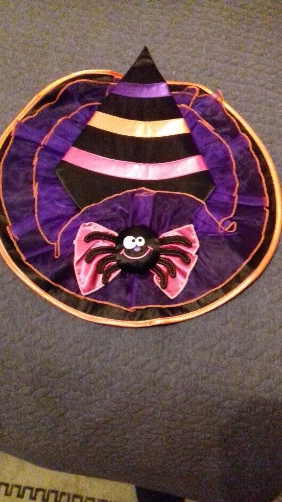 Super Cute M&S Witch's Hat with 3D Spider Motif