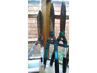 A selection of garden tools