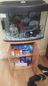 Fish tank and cupboard unit