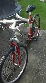 Saracen ruftrax bike