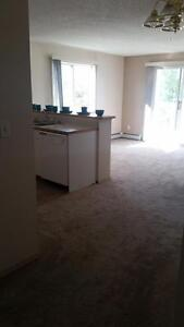 SUITE SPECIALS EVERYWHERE! 1 AND 2 BEDROOMS AVALIABLE! Edmonton Edmonton Area image 5