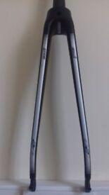 Scott carbon fork