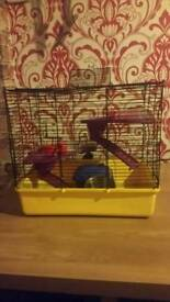 Hamster cage with extra accessories