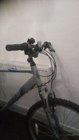 Mens apollo verge mountain bike