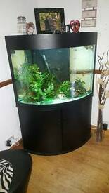 Tropical large corner fish tank 280L