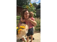 German or English Speaking Nanny available