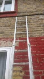 Long, ladders vgc quick sale