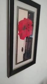 Framed Poppy picture