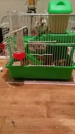 small cage suitable for a mouse