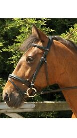 Black Full Leather Bridle with Rubber Reins