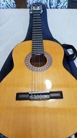 Acoustic guitar encore enc44