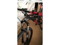 Voodoo azain mountain bike