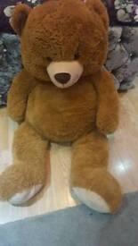 Very large teddy