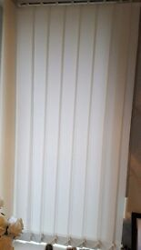 Vertical blinds in ivory, fittings included, 44inch wide and 80 inch drop. Very good condition.