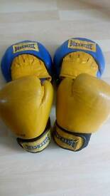 Bodymax boxing gloves and pads