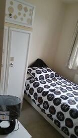 Single room in comfortable professional house £75