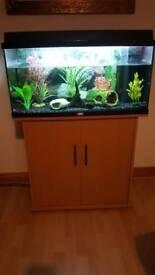 Jewel 96lt Fish Tank